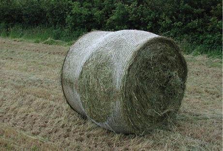 Bale damage 2