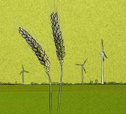 Nasza odpowiedzialność za środowisko